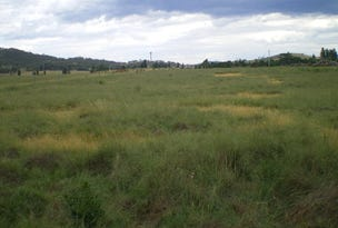 Lot 4, Monaro Highway, Bredbo, NSW 2626