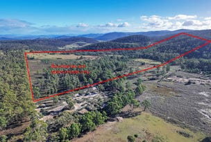 Lot 2, 575 White Hill Road, Forcett, Tas 7173