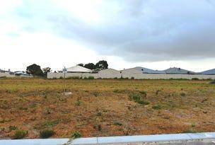 Lot 228 Thistle Avenue, Bandy Creek, WA 6450