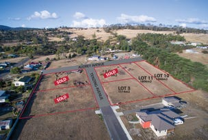 Lot 10, 80a Abels Hill Road, St Leonards, Tas 7250
