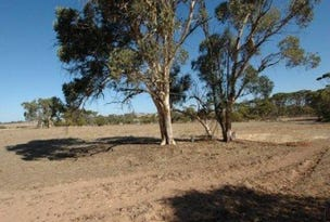 Lot 145, 145 Scott Street, Mount Hardey, WA 6302
