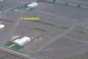 4 Tamarind Close, Ayr, Qld 4807