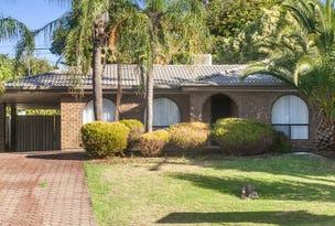 25 Braeside Avenue, Reynella East, SA 5161