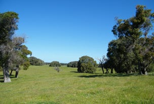 Lot 1 Ficifolia Road, Peaceful Bay, WA 6333
