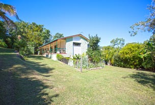 1 Muscats Access Road, Habana, Qld 4740
