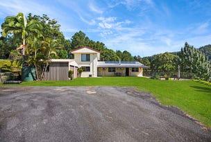 921 Tyalgum Road, Eungella, NSW 2484