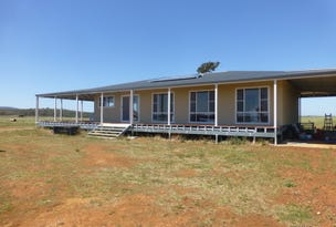 Lot 287 Newell Highway, Trewilga, NSW 2869