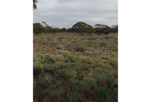 Lot 91 Foote Road, Eudunda, SA 5374