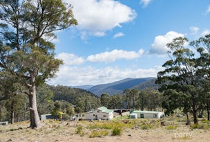 894 Sawpit Hill Road, Blessington, Tas 7212