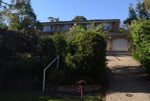 19  Bates Avenue, Blaxland, NSW 2774