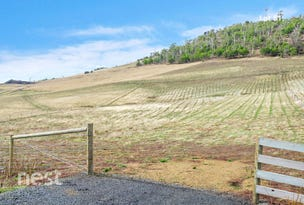 Lot 81, Cahill Place, Acton Park, Tas 7170