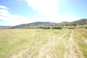 Lot 3, 485 Back River Road, Magra, Tas 7140
