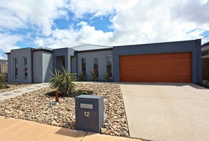 12 Wagtail Court, Williams Landing, Vic 3027
