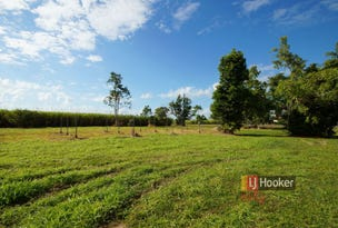 12 Brosnan Road, Lower Tully, Qld 4854