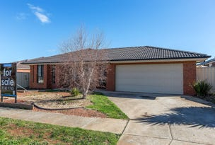 7 Golden Wattle Way, Melton West, Vic 3337