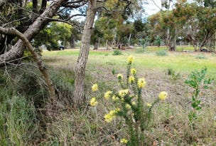 55 (Lot 704) Sixth Avenue, Kendenup, WA 6323