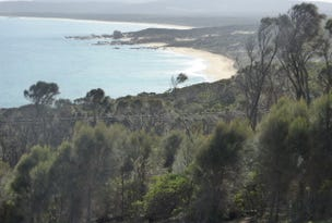 PID 1504921 Port Davies Road, Emita, Tas 7255