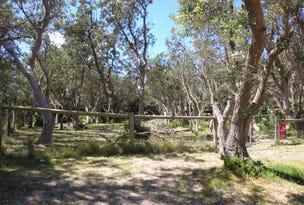31 Macassar Crescent, The Honeysuckles, Vic 3851