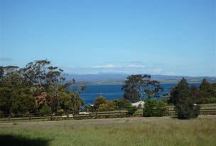 14 Chisholm Avenue, Clarence Point, Tas 7270