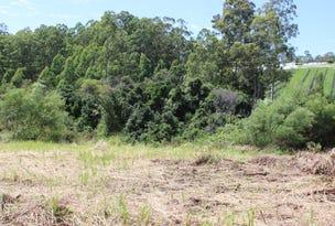 262 Grays Road, Halfway Creek, NSW 2460
