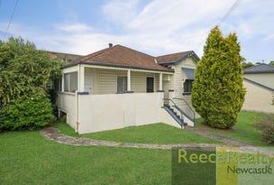 153 Newcastle Road, Wallsend, NSW 2287