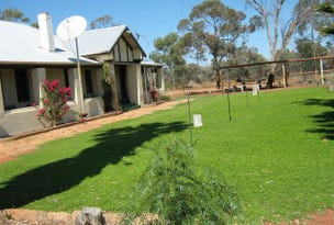 Mount Magnet, address available on request