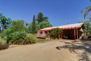 702 Kingston Road, Moorook, SA 5332