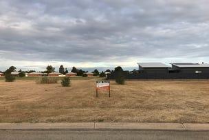 Lot 98, TEDDYS Lane, Barham, NSW 2732
