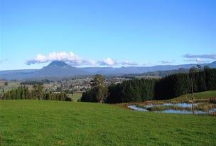 173 River Road, Deloraine, Tas 7304