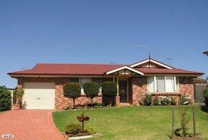 9 Kingfisher Place, Glendenning, NSW 2761