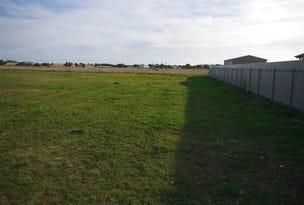 Lot/18 Dev Patterson, Edithburgh, SA 5583