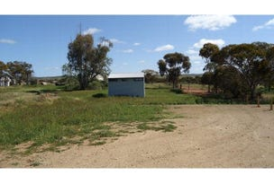 Lot 167, FIFTH STREET, Carrieton, SA 5432
