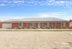 10 Arthur Road, Roseworthy, SA 5371