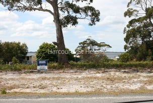 85 Acacia Drive, Ansons Bay, Tas 7264