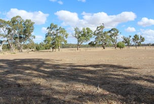 Lot 38 South Avenue, Bordertown, SA 5268