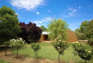 365 Chowilla St, Renmark West, SA 5341