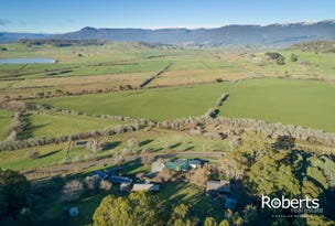 1876 Mole Creek Road, Mole Creek, Tas 7304