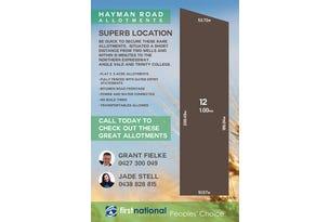 Lot 12 Hayman Road, Lewiston, SA 5501