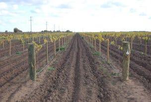 Farm 2677 Evans Road, Yoogali, NSW 2680