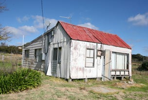 12 Potter Avenue, Emmaville, NSW 2371