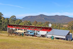 204 Thompsons Road, Milbrodale, NSW 2330