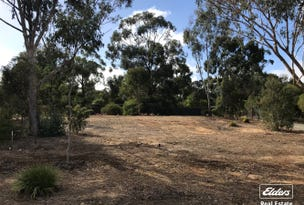 Lot 1 Adams Road, Williamstown, SA 5351