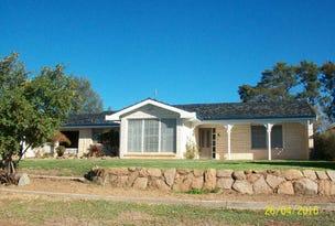 9 Riverview Avenue, Wellington, NSW 2820