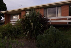 113 Tarleton Street, East Devonport, Tas 7310