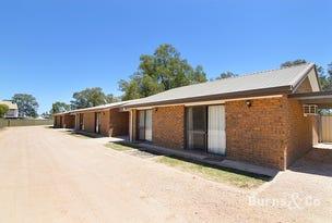 Units 1-5, 39b Wentworth Street, Wentworth, NSW 2648