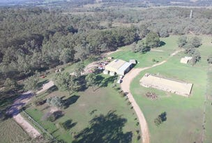 Grasstree ROW Blue Springs, Muswellbrook, NSW 2333
