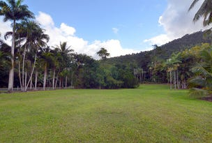 Lot 100 Finlayvale Road, Finlayvale, Mossman, Qld 4873