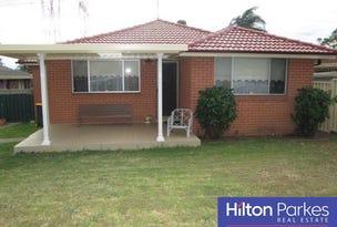 17 Hickler Grove, Bidwill, NSW 2770