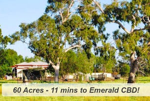 382 Gregory Highway, Emerald, Qld 4720