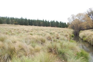 Lot 4 Caddiagte Creek, Dry Plain, NSW 2630